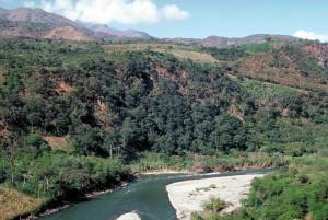 Der Fluss Ucayali
